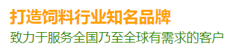 北京亿嘉龙科技有限公司