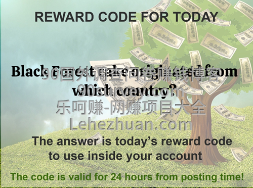 LS国外问卷赚钱网站20200717问答