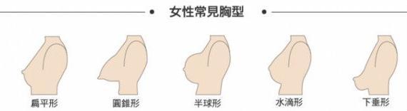 日本網站整理出《歐派的說明書》完美歐派是有標準的 漲姿勢 熱圖3